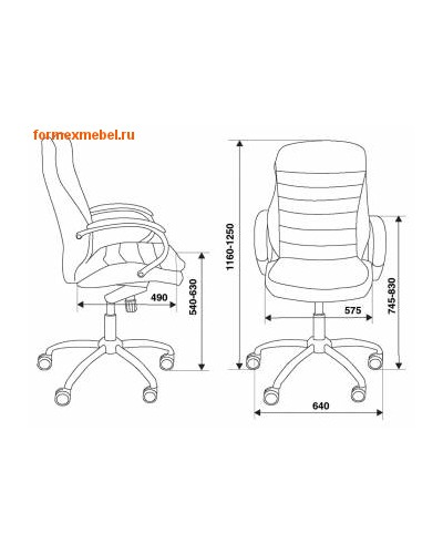 Кресло руководителя Бюрократ T-9950AXSN (фото, вид 1)
