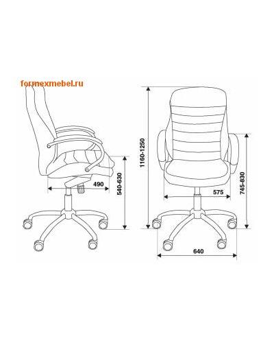 Кресло руководителя Бюрократ T-9950AXSN (фото, вид 4)