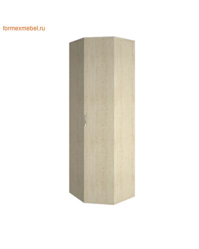 Шкаф для одежды А.ГБ-3 угловой (фото, вид 2)