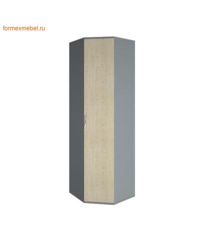 Шкаф для одежды А.ГБ-3 угловой (фото, вид 3)