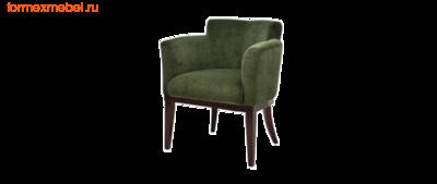 Кресло для отдыха Гартлекс С-04 (фото, вид 1)