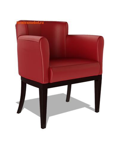 Кресло для отдыха Гартлекс С-04 (фото)