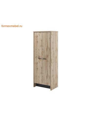 Шкаф для одежды ЭКСПРО Торстон Т-31-01 (фото)