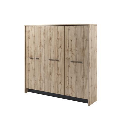 Шкаф трехсекционный Т-33-03